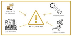 Estrés Oxidativo - Causas, Síntomas y Detección